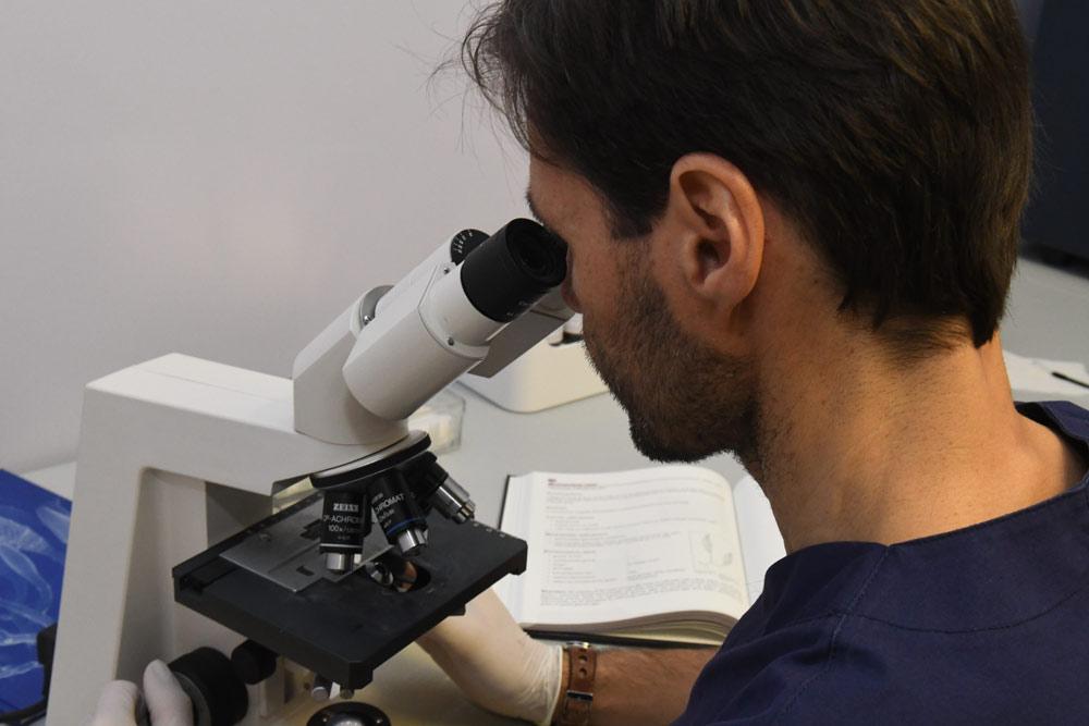 micologia monza e brianza gorani